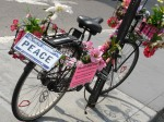 PEACE bike ride once a month