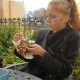 English tea on Tom's terrace.