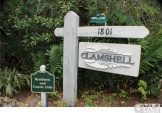 THE CLAMSHELL condos